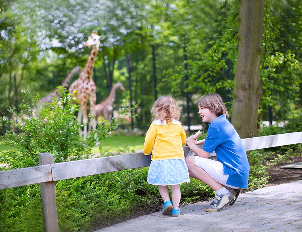 Washington, DC Smithsonian National Zoological Park